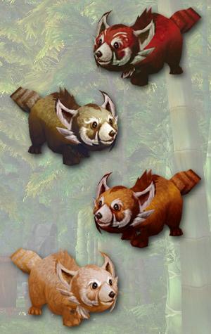 Red Panda, Mountain Panda, Sunfur Panda, Snowy Panda