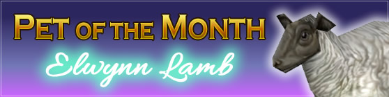Elwynn Lamb - Pet of the Month March 2016