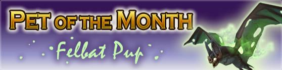 Feltbat Pup - Pet of the Month August 2016