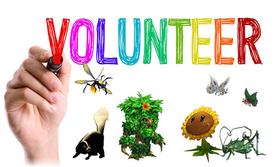 Volunteer Needed: Pet Profile Graphic Artist