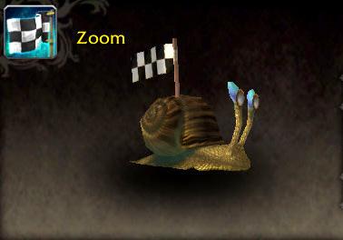 Zoom pet