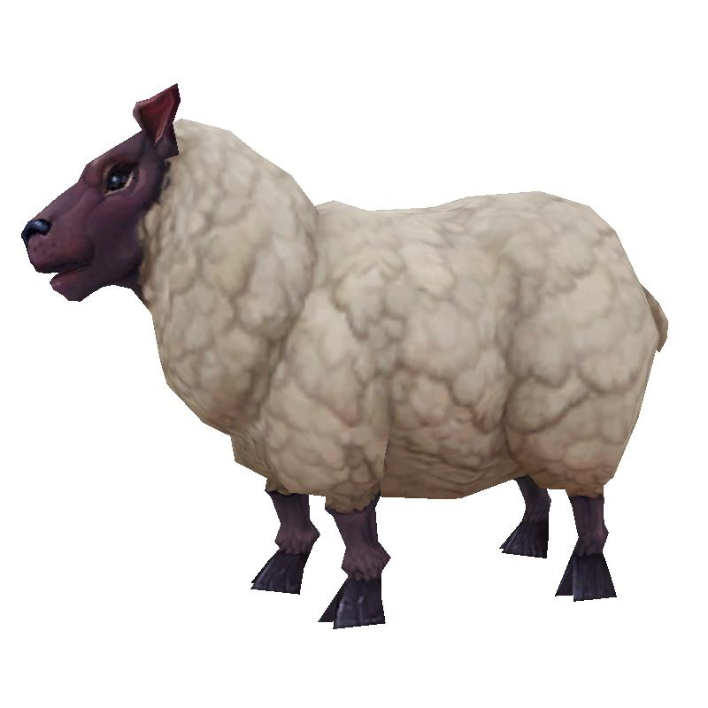 Updated sheep model