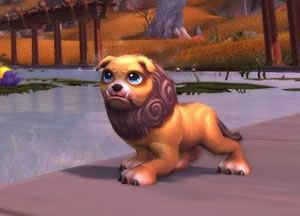 Possible MoP Collector's Edition Pet