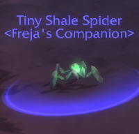 Tiny Shale Spider