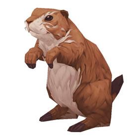 Borean Marmot