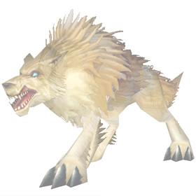 Coyote Spirit