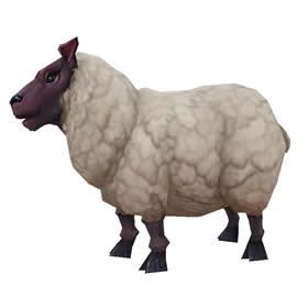 Elwynn Lamb