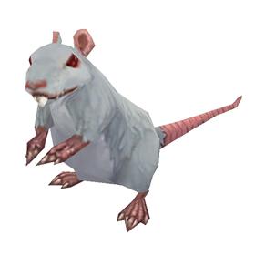 Frostfur Rat