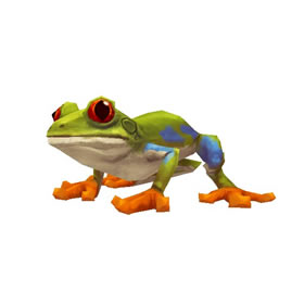 Spotted Bell Frog