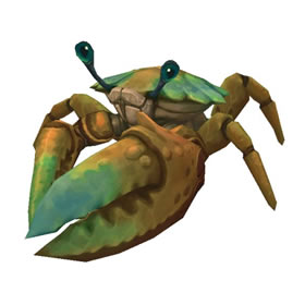 Strand Crab