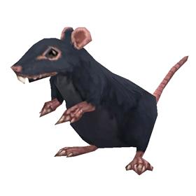 Undercity Rat